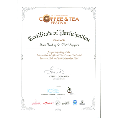 ICTF Certificate of Participation 2014