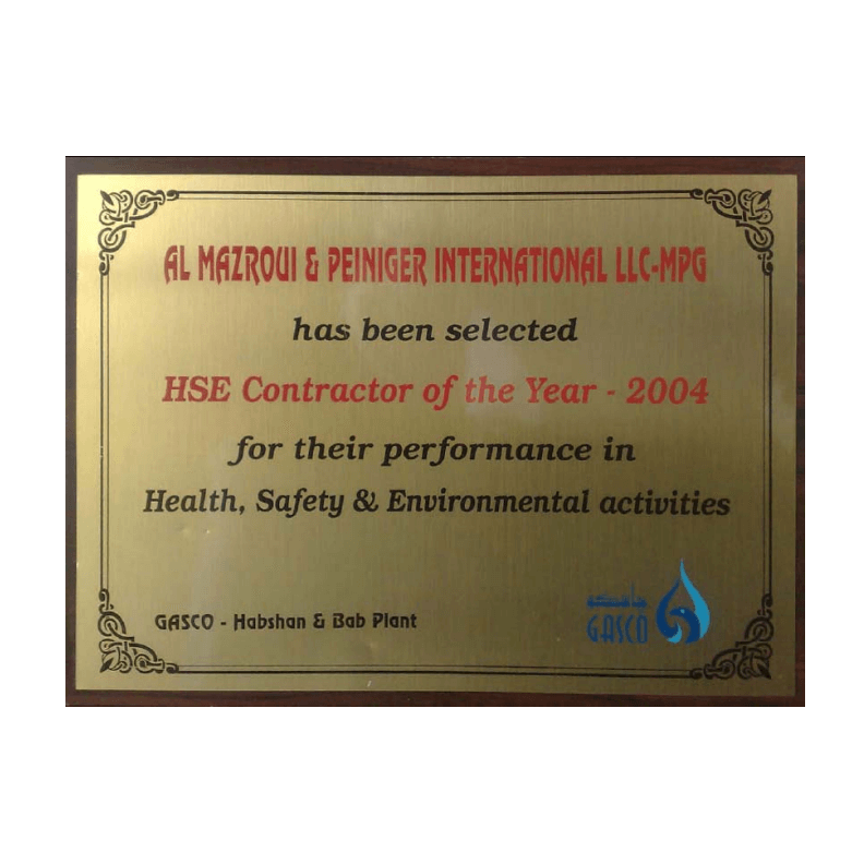 HSE Contractor of the Year - 2004